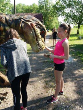 D-Rex Dinopark
