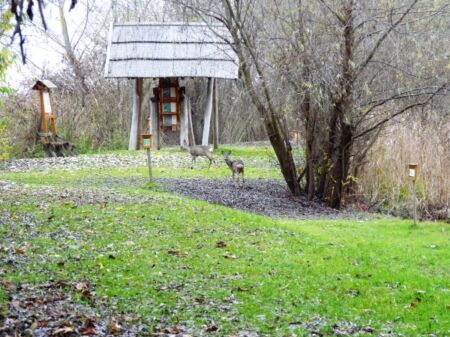 Téli Fotótúra a Tisza-tavon