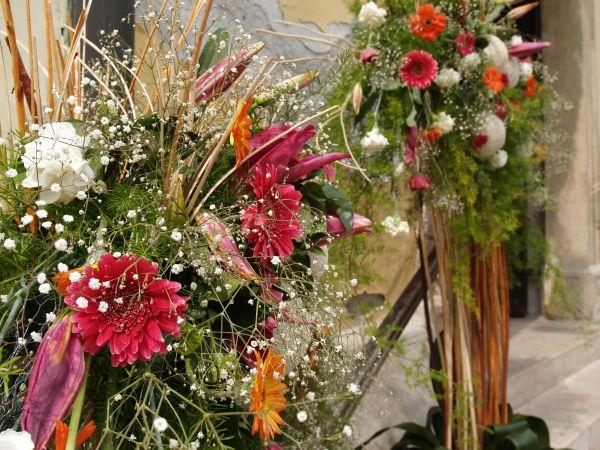 Pünkösdi Virágálom - Székesfehérvár