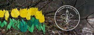 VIII. Nőnapi Virág futás 2020