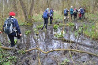 Víz Világnapja programok a Duna-Ipoly Nemzeti Parkban