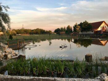 Bella Állatpark - Siófok