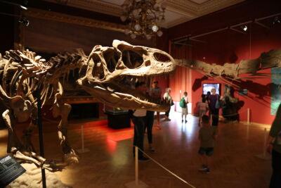 Évmilliók urai - Élethű dinók Amerikából